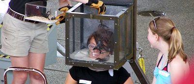 7. Stunt Tester